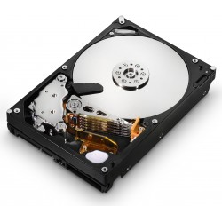 Seagate Hard Disk Sata 3,5'' 250gb Barracuda 7200.12